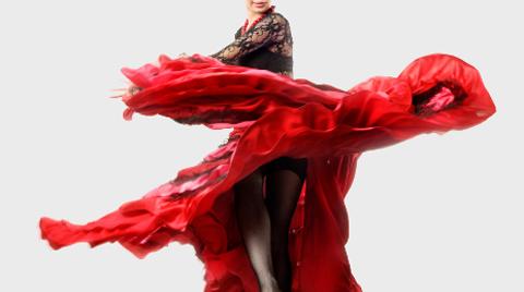 Онлайн-обучение фламенко. Девятый урок (фото, видео)