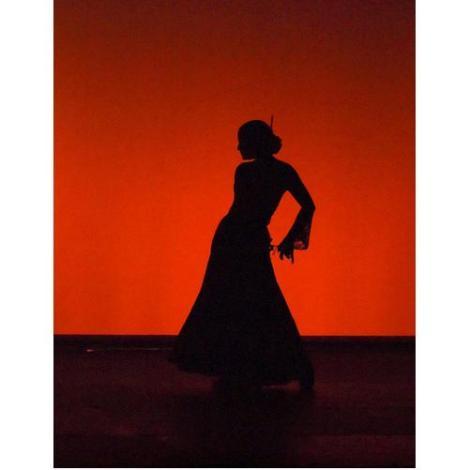 Онлайн-обучение фламенко. Танец с предметами (фото, видео)