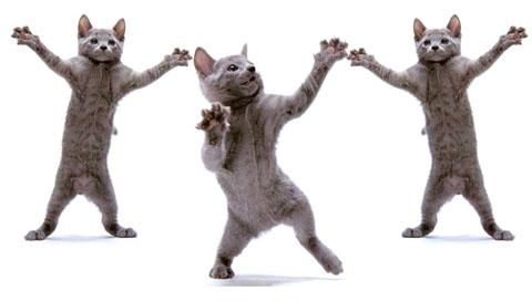 Юмор в танце