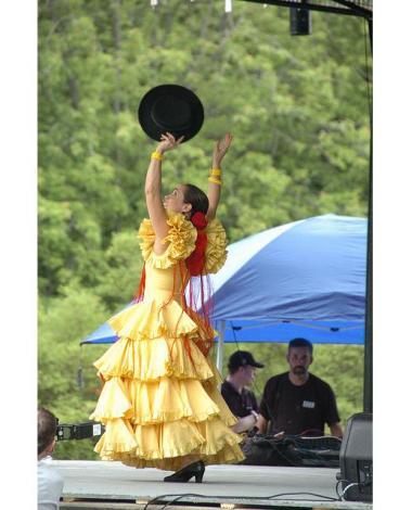 Неистовство и страсть андалузского танца (фото, видео)