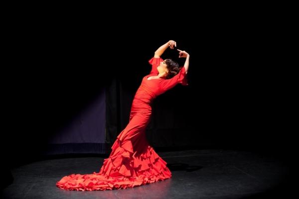 Онлайн-обучение фламенко – важность статичных фаз